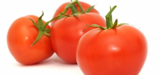 tomates #8