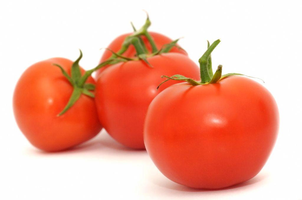 El tomate la manzana del amor la cuina de catalunya for Noctuelle de la tomate